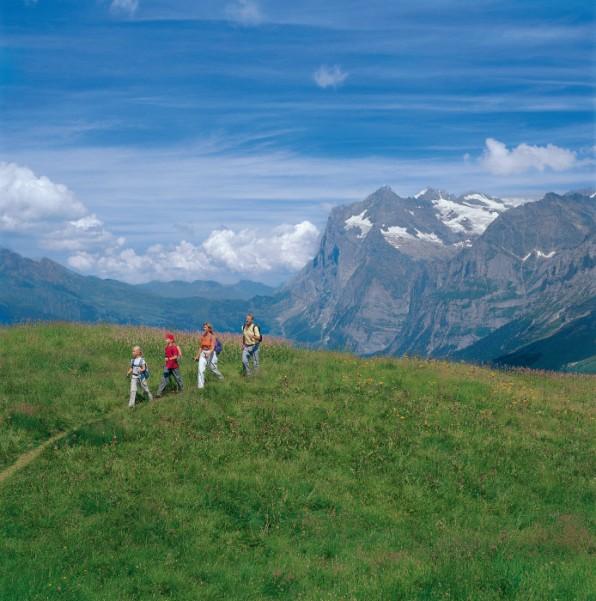 Switzerland. get natural. Grindelwald in the Bernese Oberland. Hiking at Kleine Scheidegg with view of the Wetterhorn. Schweiz. ganz natuerlich. Grindelwald im Berner Oberland. Wandern auf der Kleinen Scheidegg, mit Blick auf das Wetterhorn. Suisse. tout naturellement. Gindelwald dans l'Oberland bernois. Randonnee sur la Petite-Scheidegg avec vue sur le Wetterhorn. Copyright by: Switzerland Tourism By-Line: swiss-image.ch/Walter Storto