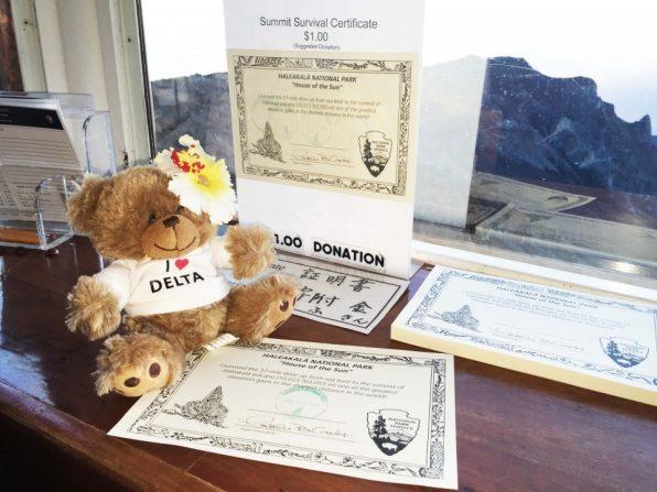 dl-bear_certificate